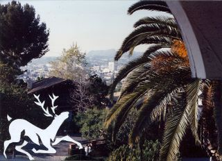 Deer stencil in photo