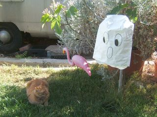 Recycled envelope ghost halloween decoration