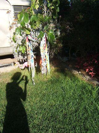 Stefanie girard shadow photo