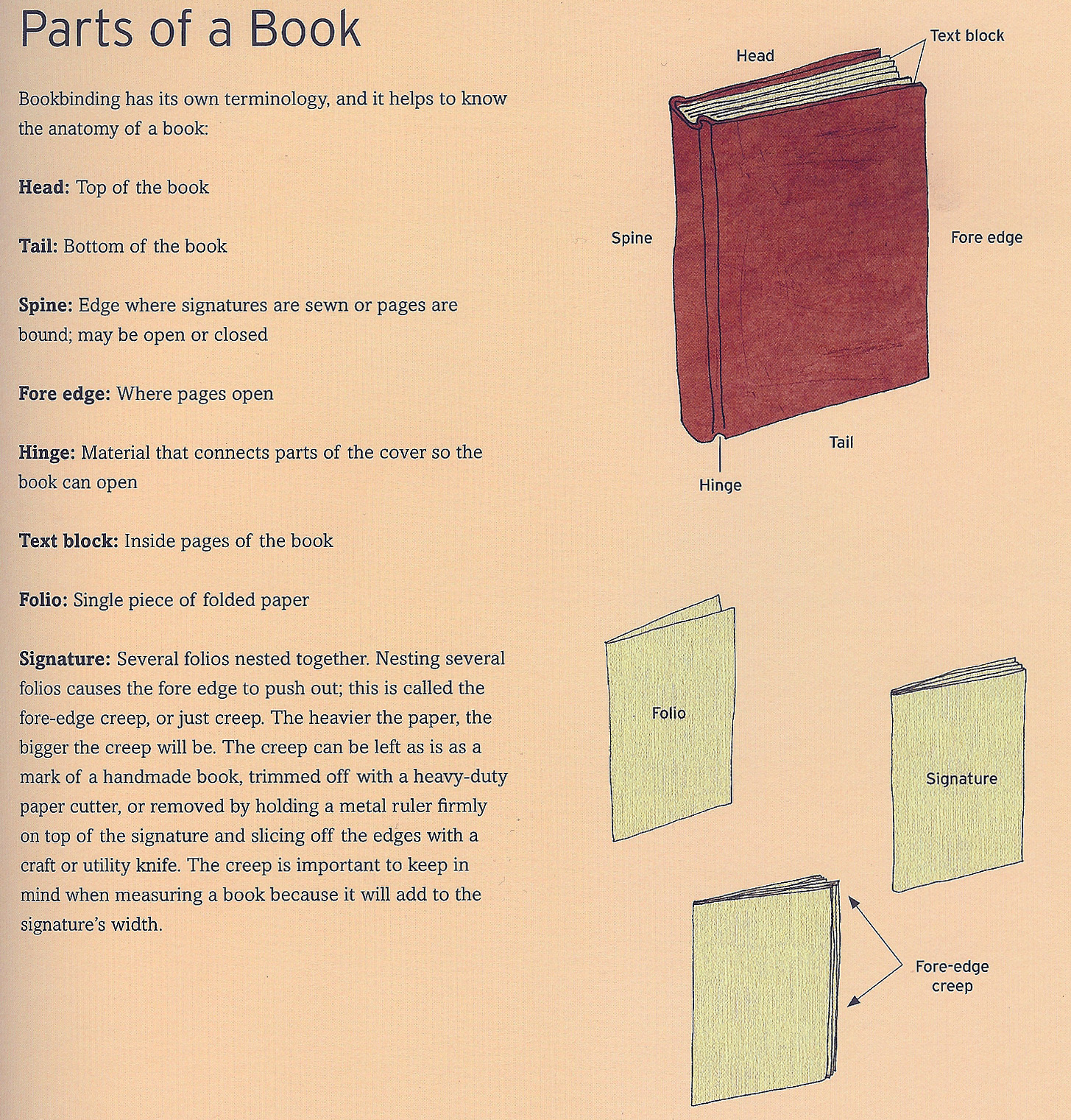 Book Parts Terms What Are The Parts of Book