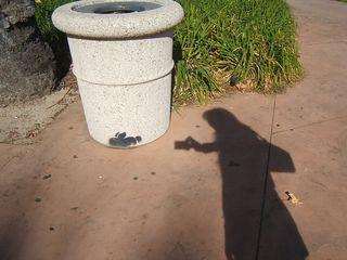 Bunny stefanie photo shadow