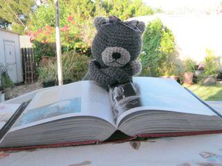 Jane doe amineko reading book