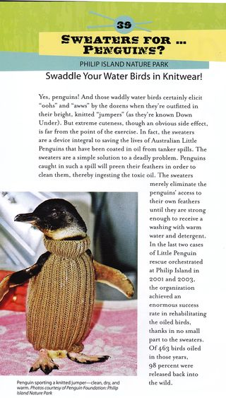 Knit sweaters for penguins story