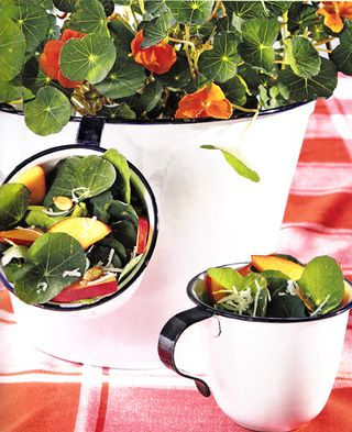 How to serve saled in cups for summer