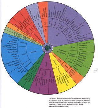 Wine aroma wheel flavors tastes