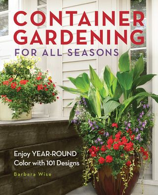 Container gardening ideas for all seasons