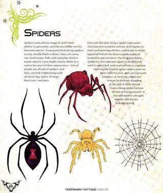Spider tattoo art spider web image clip art