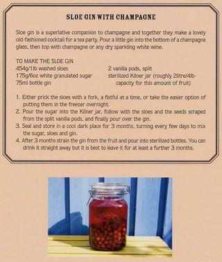 How_to_make_sloe_gin_witih_champagne