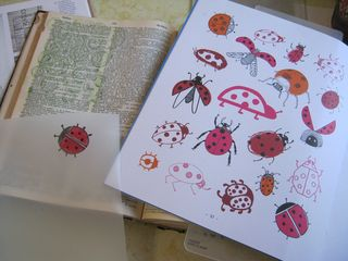 How-to-draw-lady-bugs-20-ways-book