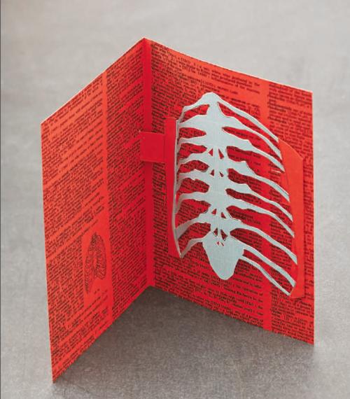 Rib cage skeleton pop up card