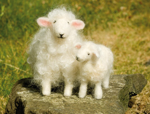 Wool_pets_lambs