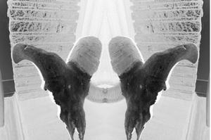 Hornskull4_invert_mirror_2