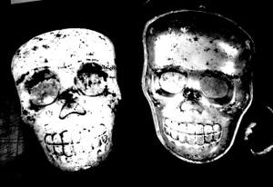 Paper_mache_skull4